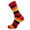 Dámské ponožky barevné pruhy - zobrazit detail zboží